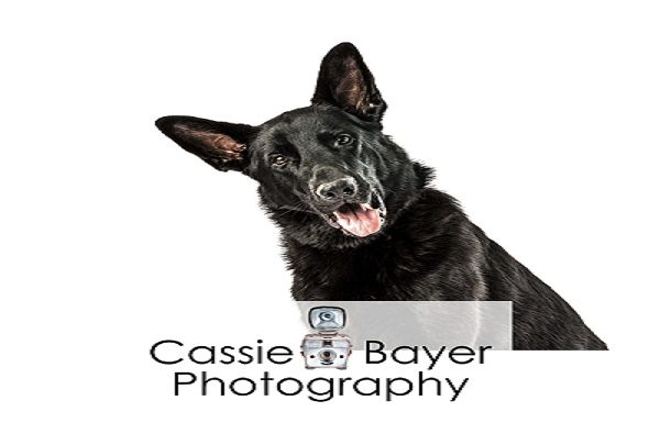 Cassie Bayer Photography